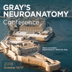 grays-neuroanatomy-conference