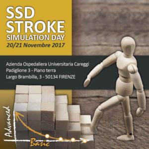 ssd-stroke-simulation-day